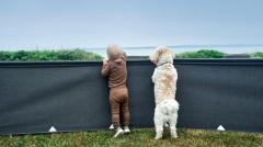 Isabella Windschutz für Hunde
